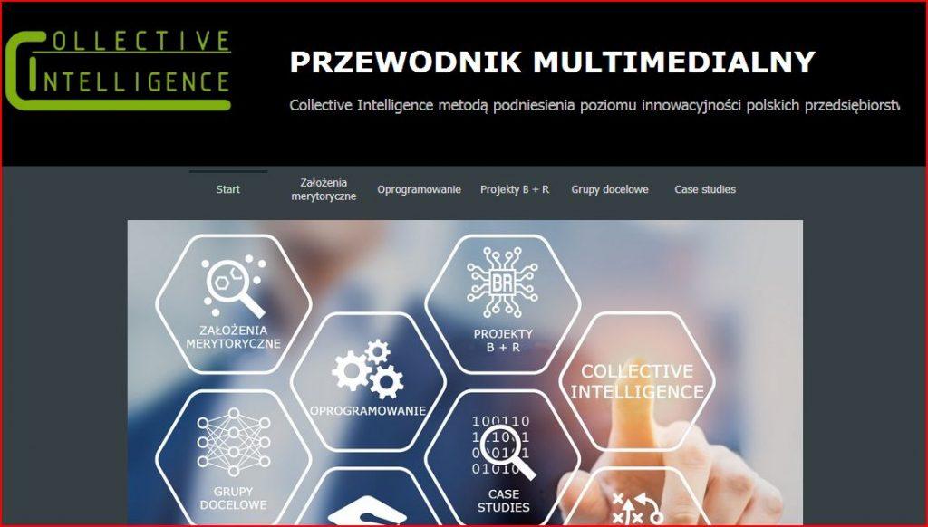Przewodnik multimedialny - CI